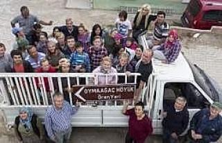 Vezirköprü Oymaağaç Höyüğü 2013 Kazı Çalışmaları...