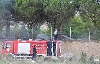 Yangın Çam Ağaçlarına Sıçramadan Söndürüldü...