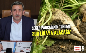 Amasya Şeker Fabrikası Pancar Alım Fiyatını Açıkladı