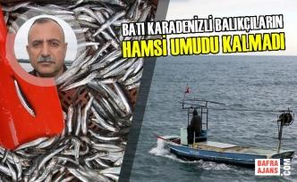 Batı Karadenizli Balıkçıların Hamsi Umudu Kalmadı