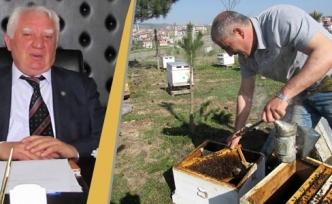 Arı Yetiştiricilerine İlkbahar Bakımı Uyarısı