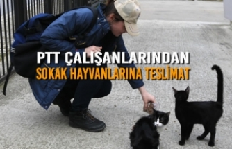 PTT Çalışanlarından Sokak Hayvanlarına Teslimat