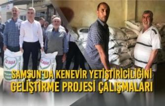 Samsun'da Kenevir Yetiştiriciliğini Geliştirme Projesi Çalışmaları