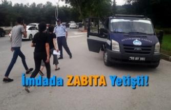 Samsun'da YKS heyecanı; İmdada ZABITA yetişti!