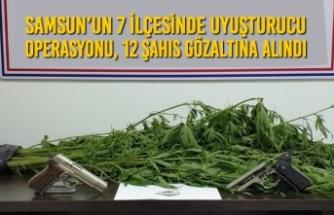 Samsun'un 7 İlçesinde Uyuşturucu Operasyonu, 12 Şahıs Gözaltına Alındı