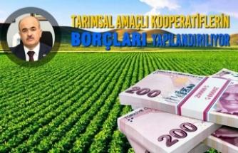 Tarımsal Amaçlı Kooperatiflerin Borçları Yapılandırılıyor