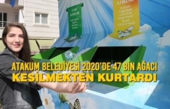 Atakum Belediyesi 2020'de 47 Bin Ağacı Kesilmekten Kurtardı