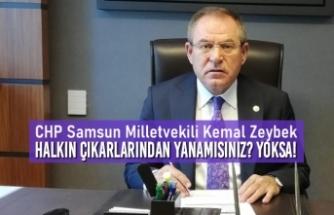 """Kemal Zeybek; """"Halkın Çıkarlarından Yanamısınız? Yoksa!"""""""