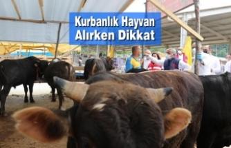 """İbrahim SAĞLAM; """"Kurbanlık Hayvan Alırken Dikkat!"""""""