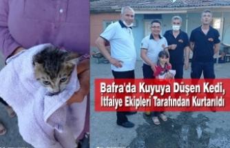 Kuyuya Düşen Kedi, İtfaiye Ekipleri Tarafından Kurtarıldı