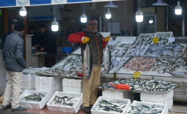 Ağlara takılan torikler balıkçının yüzünü güldürdü