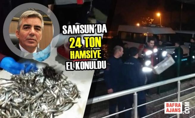 Samsun'da 24 Bin Kilogram Hamsiye El Konuldu