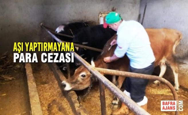 Hayvanların Zorunlu Aşı Yaptırmayana Para Cezası