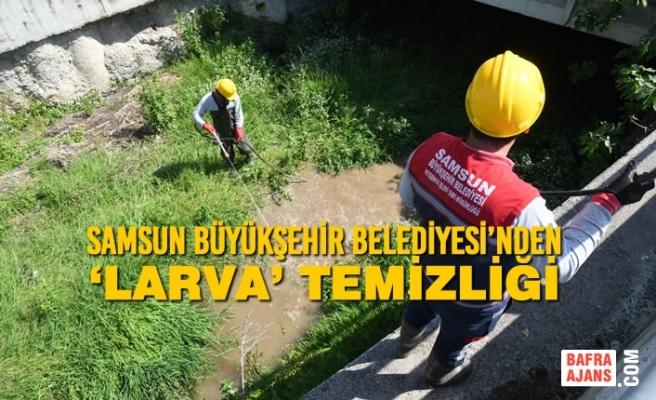 Samsun Büyükşehir Belediyesi'nden 'Larva' Temizliği