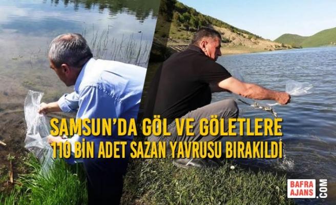 Samsun'da Göl ve Göletlere 110 Bin Adet Sazan Yavrusu Bırakıldı