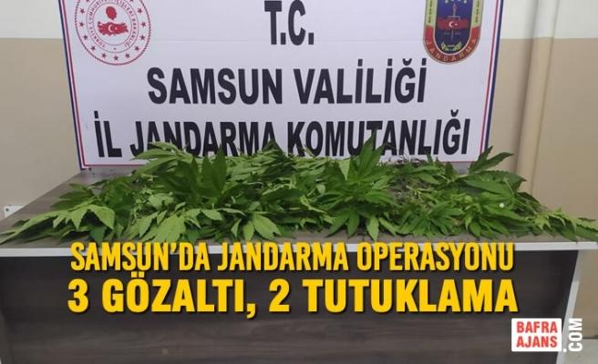 Samsun'da Jandarma Operasyonu; 3 Gözaltı, 2 Tutuklama