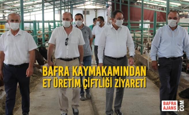 Bafra Kaymakamından Et Üretim Çiftliği Ziyareti