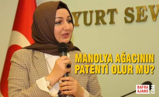 Manolya Ağacının Patenti Olur Mu?