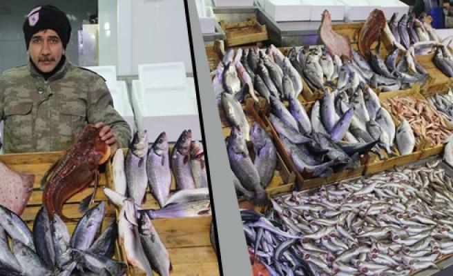 Balık Fiyatlarına Fırtına Zammı
