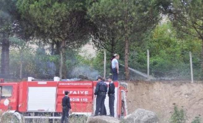 Yangın Çam Ağaçlarına Sıçramadan Söndürüldü