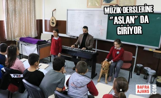 """Müzik Derslerine """"Aslan"""" Da Giriyor"""