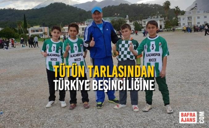 Tütün Tarlasından Türkiye Beşinciliğine