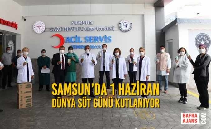 Samsun'da 1 Haziran Dünya Süt Günü Kutlanıyor