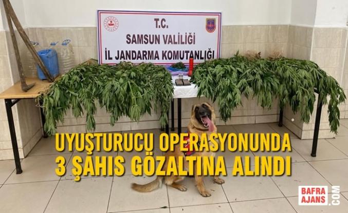 Samsun'da Düzenlenen Uyuşturucu Operasyonunda 3 Şahıs Gözaltına Alındı