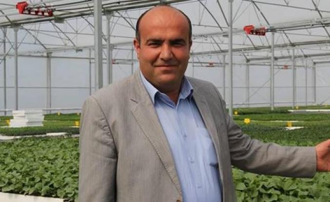 Karadeniz Fide; Bafra'da Üretime Başladı
