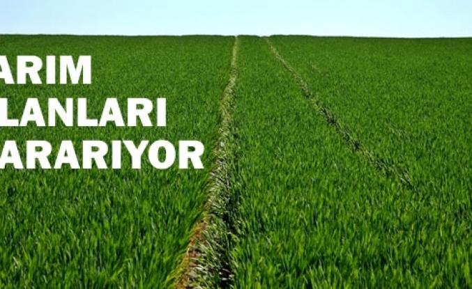Türkiye'nin Tarım Alanları Kararıyor